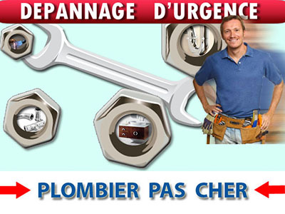Assainissement Canalisation Montesson 78360