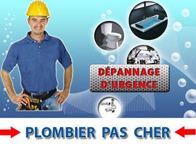 Assainissement Canalisation Saint Cyr sur Morin 77750
